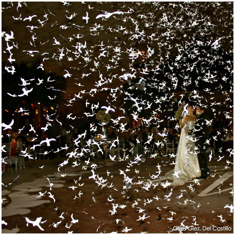 bodas-y-xv-aos